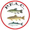 Pembs Federation Of Angling Coaches